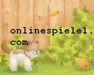 Cat and Dog gratis spiele